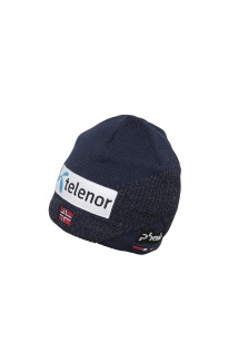 Шапка Norway Alpine Team Watch Cap, мужск. DN1